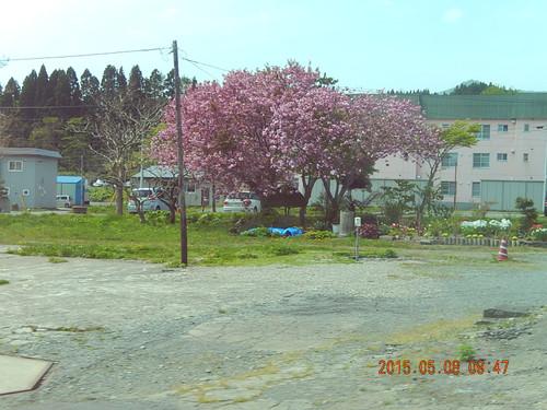 Dscn2975